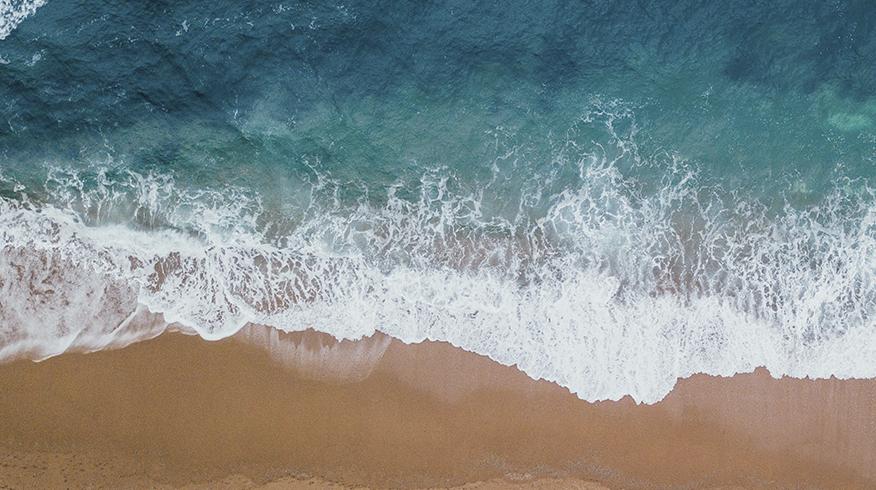 """Nace """"Santander for the seas"""" para preservar mares y océanos"""